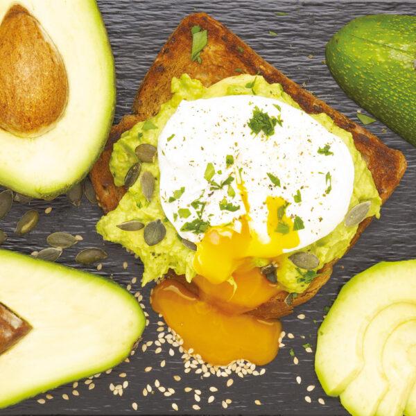 avo toast avo club seed superfood